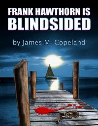 blindsided_cover